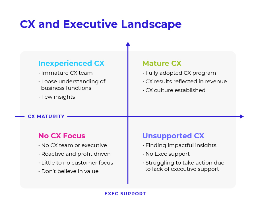 CX and Executive Landscape